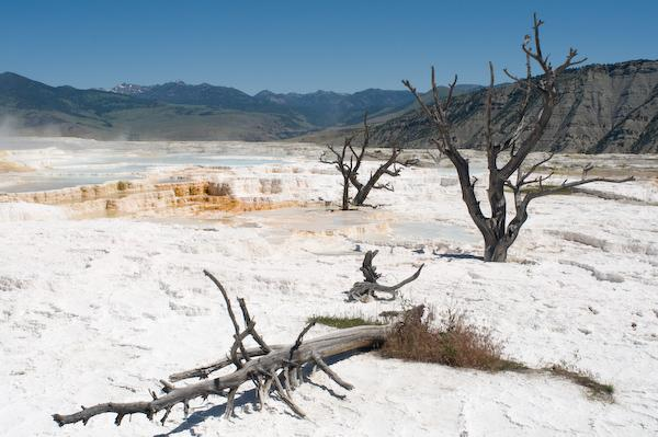 Dried up hot springs (Yellowstone NP, Wyoming)